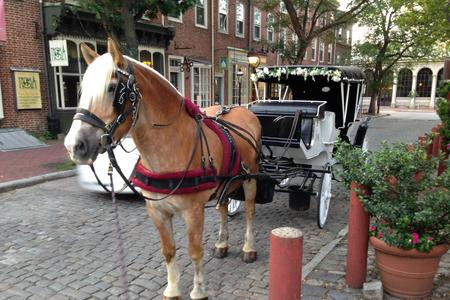 your horse drawn carriage awaits