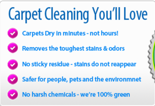 Go Dri Carpet Cleaning Knoxville