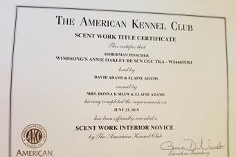 AKC Scent Work Novice Certificate