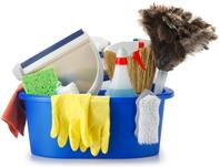 cleaning supplies and basket