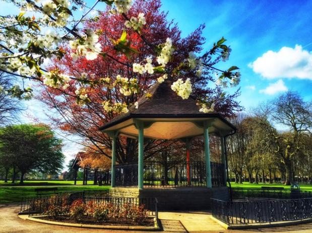 Our beautiful bandstand (image courtesy of JW)