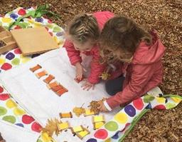 comparing leaf colors to tablets