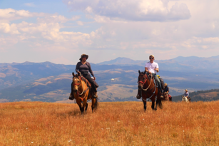 Yellowstone National Park, horseback riding, pack trips