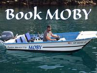 Book Moby