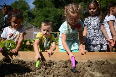 School Community Garden Grow Ohio Valley