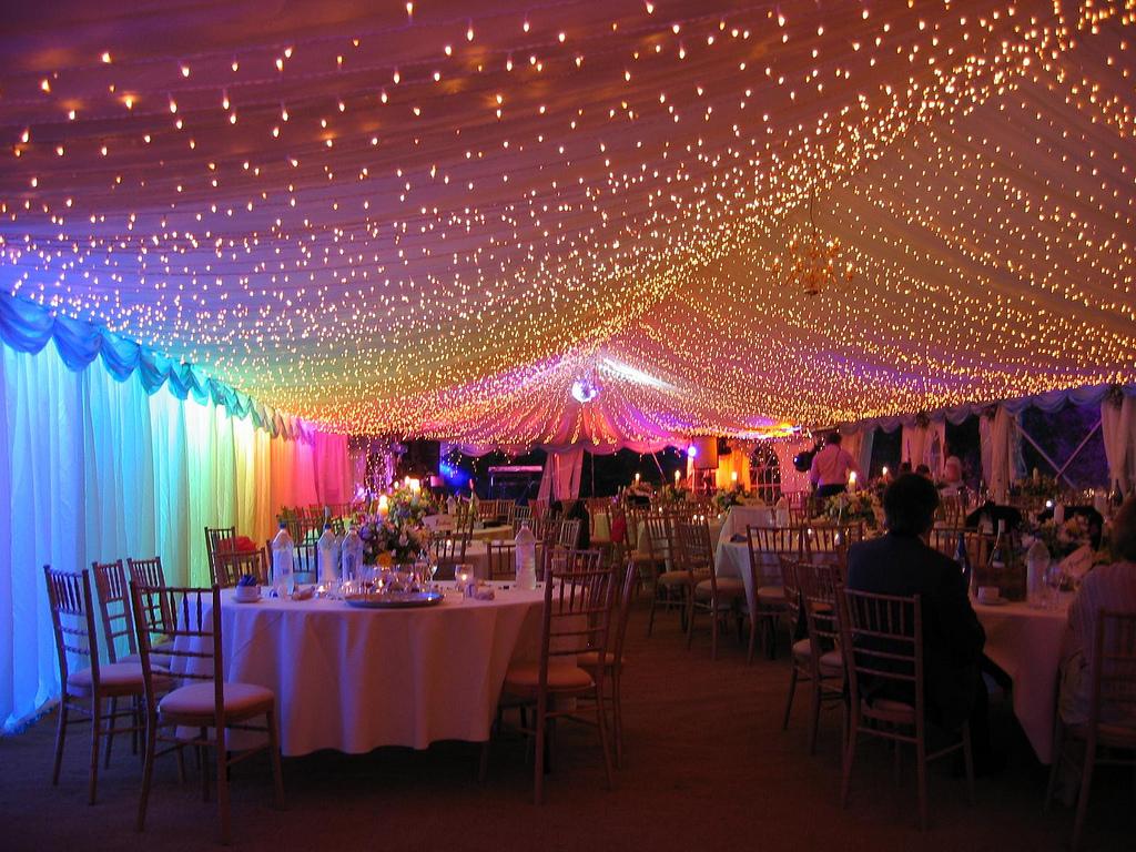 Mega djs wedding dj party dj palm beach fl junglespirit Choice Image