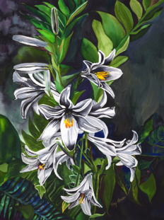 Tracy Harris Watercolor, White Lilies, Limited Edition Giclee, Watercolor Artist Tracy Harris