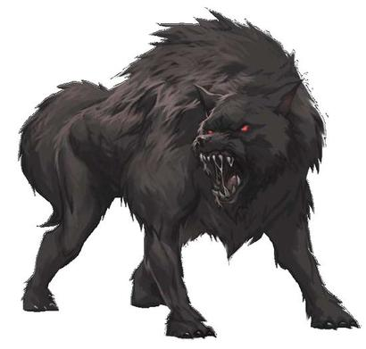 Black Dog Publishing White Wolf