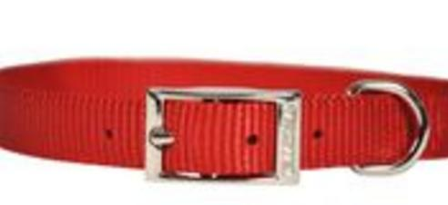 Single Layer Nylon Collar - 5/8 in Dog Collars