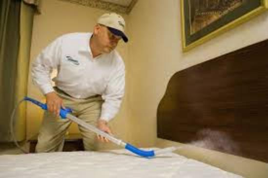 Professional Bed Bug Prep Cleaning Service and Cost Las Vegas NV MGM Household Services