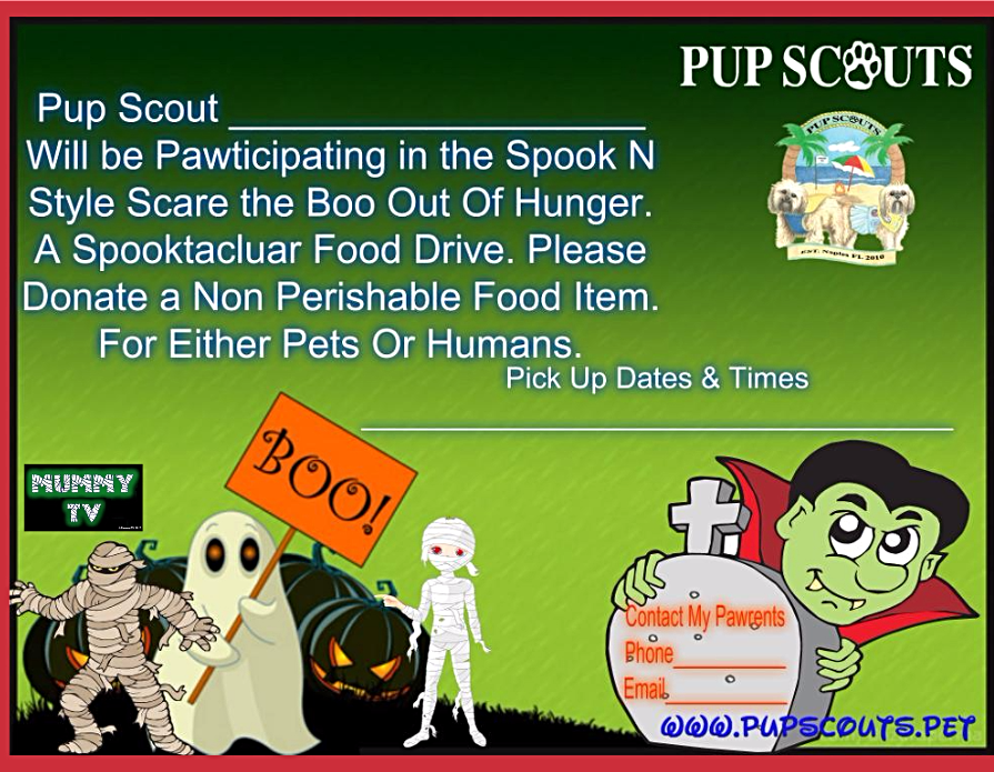 Pup Scouts Spook N Style
