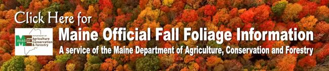2017 Fall Foliage Information