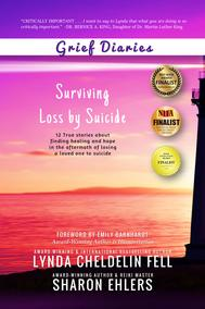 Grief Diaries Surviving Loss by Suicide audio excerpt