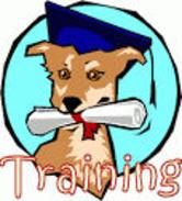 Dog Training Obedience Class Service Dog