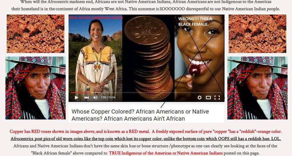 compare and contrast native american indians and african americans