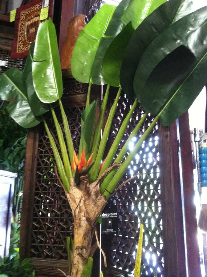 Decor direct wholesale warehouse lighting decor direct has a great selection of silk plants tropical trees bamboo trees ficus trees silk foliage orchids tropical flowers and pre made mightylinksfo