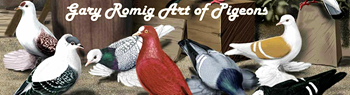 Gary Romig Pigeon and Bird Art One of the best artists
