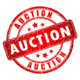 Platinum Auction Co