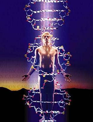 「The six pairs of strands are called the 12-strand spiritual DNA.」的圖片搜尋結果