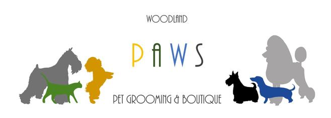 Dog Grooming Courses Dartford Kent Woodland Paws