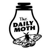 Day to Rejoice on Daily Moth Deaf News