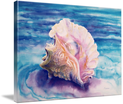 Queen Conch Watercolor by Savanna Redman - shown as a Giclee Print on Canvas
