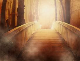 bridge into light, inspiration, ellie hadsall, cosmicgathering,motivation, hope, healing