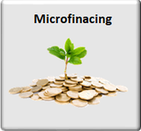 Microfinancing using Blockchain Technology