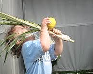 Oahu Jewish Ohana High Holy Days Sukkot