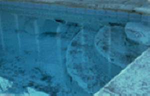 Swimming pool algae problems pool for Kill black algae swimming pool