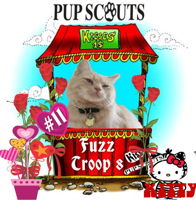 PupScouts Kissing Booth Smooch a Pooch Kiss a Kitty