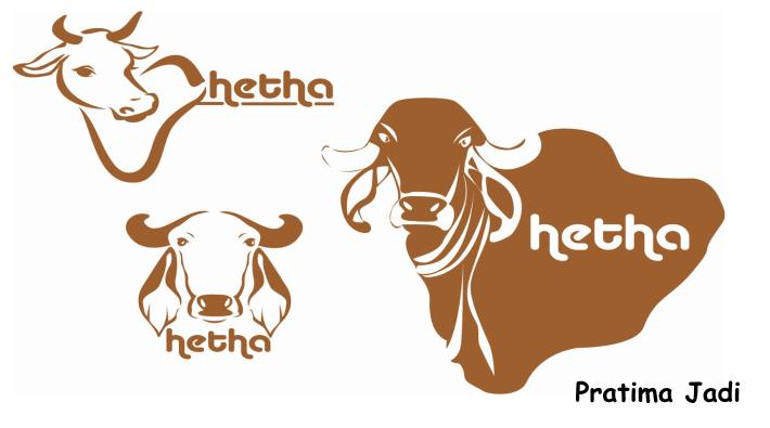 Gir Cow Surya Ketu Nadi - Gir Cow - 1904x874 PNG Download - PNGkit