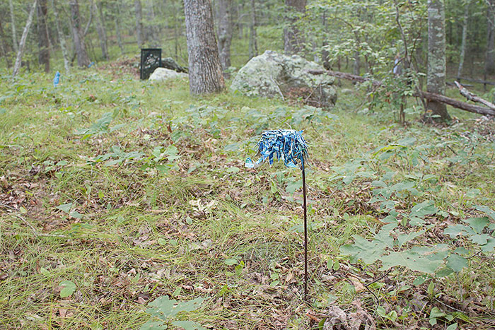 Paul Farmer Artist Outdoor Installation Art Meditation Trail Paintings In The Wild