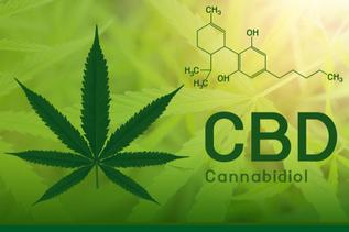 CBD benefits blog image