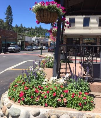 Bell Tower Garden Project Main Street Placerville California Community Pride Volunteers