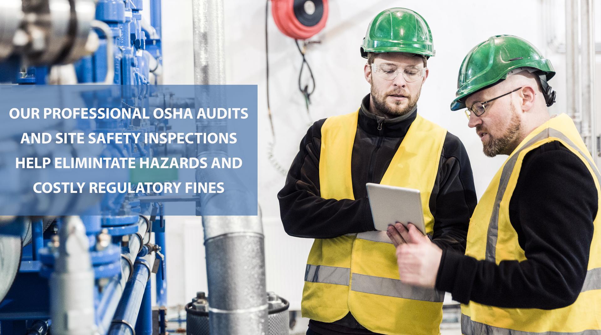Steve greenberg irvine audit - Steven Brooks President Of Safetynet Inc