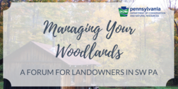 Managing your Woodlands registration info