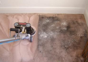 carpet-cleaning-new-hope
