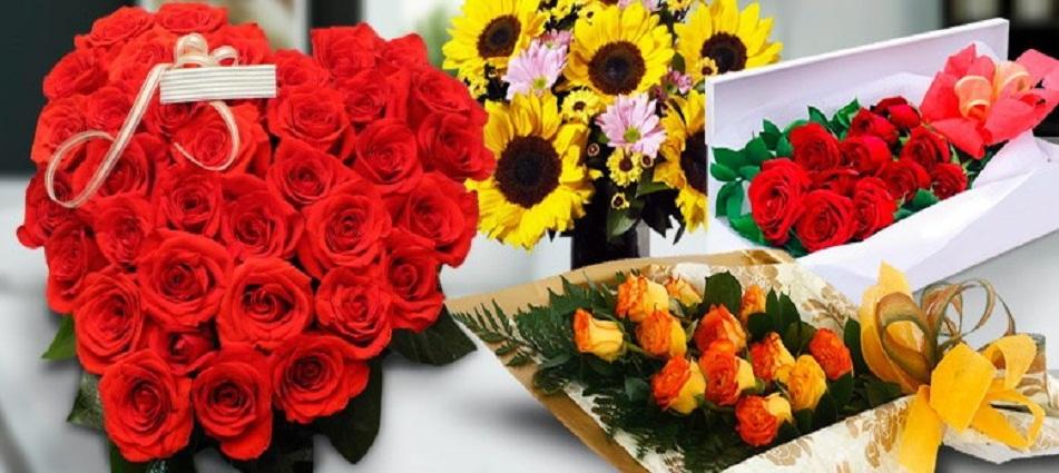 Flores Clarisa