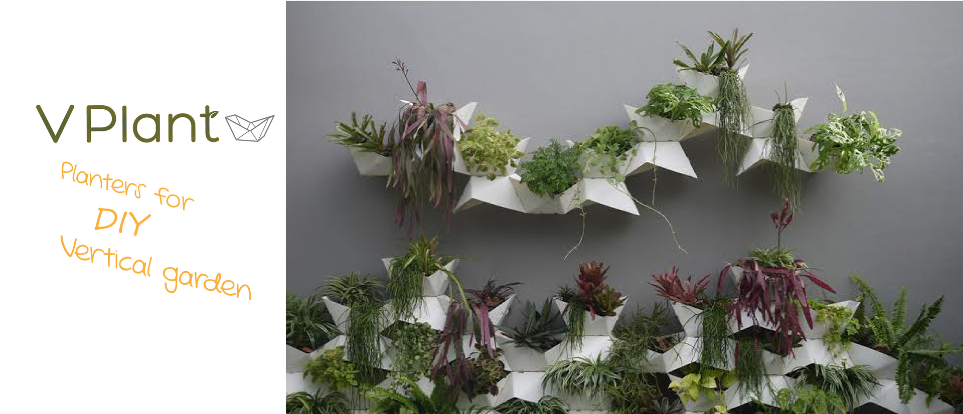 Garden Wall Planter Wall Planters Vplant The Wall