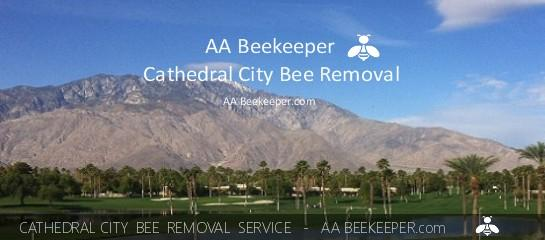 Cathedral City Bee Removal services