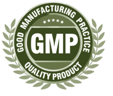 GMP Food Safety Audit Certification