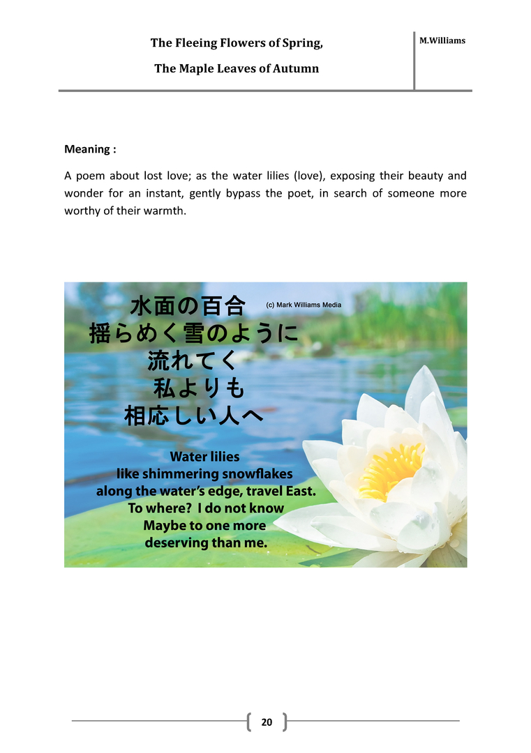 Japanese Poetry Book The Fleeting Flowers Of Spring