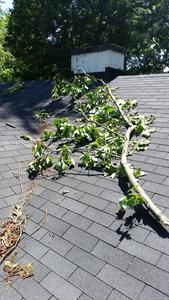 storm damaged roof louisville