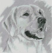 Cross Stitch Chart of a Labrador original artwork by Nick Clark