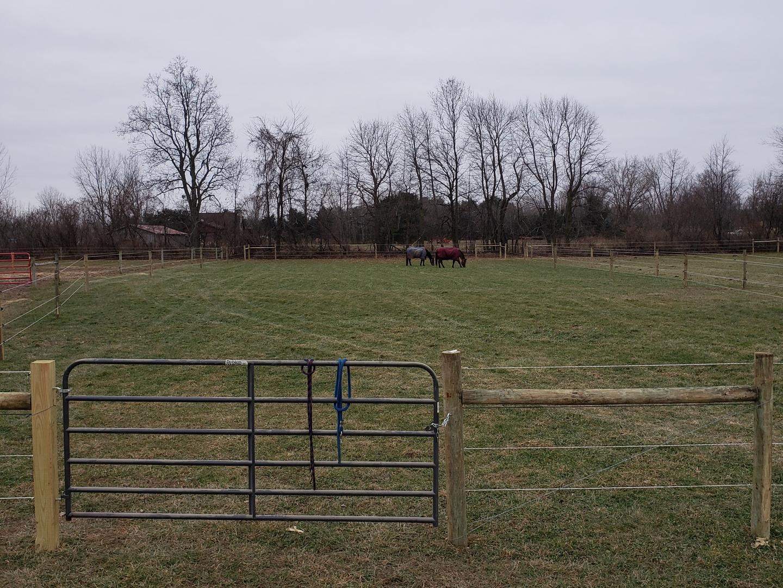 Horse Boarding Facilities - Newstead Equestrian Center Llc