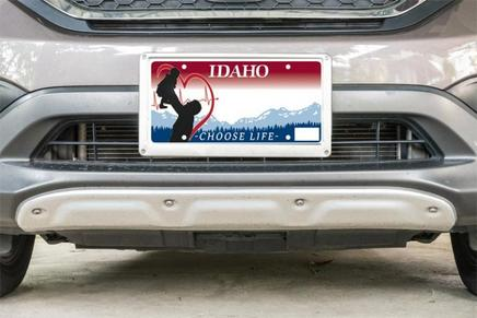 License Plate Coming Soon!!