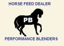 Performance Blenders: Equine Nutrition