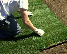 Expert sod installation in Oakville