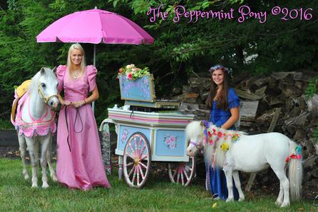 Princess Pony Party with Flower Cart and mini horse